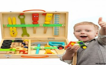 Using Toys for Childlike Learning